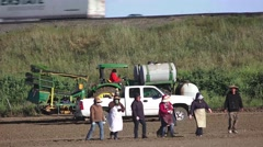 Farm labor walking off job, crossing field Stock Footage