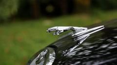 Jaguar emblem car bumper Stock Footage