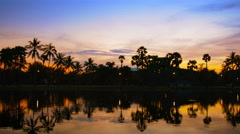 Sunset behind Trees with Shadowy Pond in Foreground Stock Footage