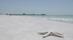 Starfish on the Beach of a Resort (12 of 13) Stock Footage