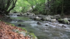 River in the Forest in Rametului Gorge, Romania - stock footage