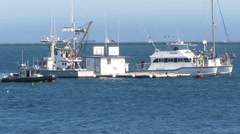 Fishing Boats At Bait Barge Stock Footage