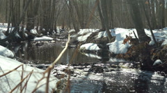Flowing stream during Spring thaw, slider move Stock Footage