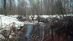 Flowing stream during Spring thaw, pan down, wide shot Stock Footage