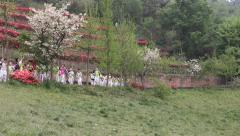 Students line up a long queue and follow a teacher, walking in the park Stock Footage