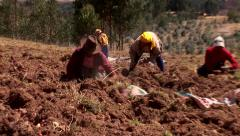 Working farmers on a field in the andes of Peru Stock Footage