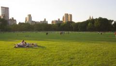 Central Park in summer time Stock Footage