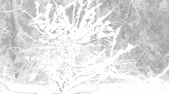 Whiteout snowstorm - stock footage