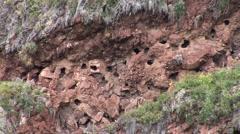 Inca Ruins, Pisac, Peru Stock Footage