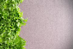 Border of crisp California lettuce on textile Stock Photos