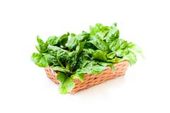 Bunch of green raw spinach leaves close up differential focus Stock Photos