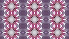 Lovely kaleidoscopic animation with three lines of abstract flowers. - stock footage