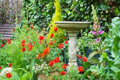 Summer bedding flowers with decorative stone bird bath - stock photo