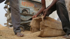 India agriculture, scooping rice into bags at filling station Stock Footage
