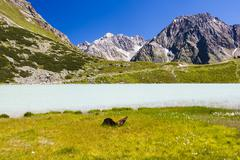 Lake Rifflsee and Sunna Alm in the Pitztal in Austria with the Wassertalkogel Stock Photos