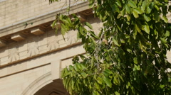 India Gate in New Delhi, detail from behind tree leaves Stock Footage