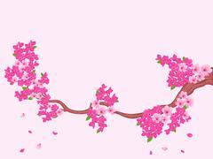 Blooming Sakura branch over light pink - stock illustration