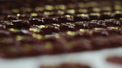 Production of chocolates Stock Footage