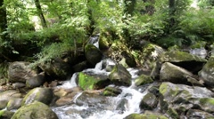 Small waterfall in river. landscape Stock Footage