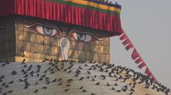 Pigeons rest on Boudhanath stupa, 'all seeing eyes', Kathmandu, Nepal Stock Footage
