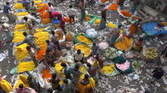 Trading flowers at the busy Mulik Ghat market in Kolkata, India Stock Footage