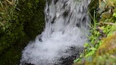 Waterfall & birdsong - stock footage