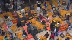 India busy fruit market, buying, selling oranges, crowded, Kolkata, Asia Stock Footage