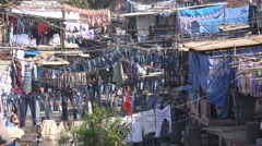 Jeans, pants, shirts, and other garment drying in open air laundromat in Mumbai Stock Footage