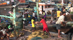 Fishermen bring in freshly caught fish and shrimp in a port in Mumbai, India Stock Footage