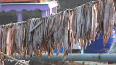Dried fish on a fishing boat in India Stock Footage