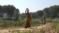 Bangladesh, women carry baskets with water through tea fields Stock Footage
