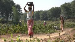Bangladesh, women carry baskets of water on their heads Stock Footage