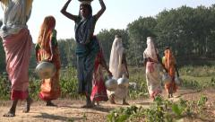 Bangladesh, agriculture, rural, women carry baskets of water on their heads Stock Footage