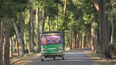 Bangladesh, a motorized rickshaw drives through tea estates Stock Footage