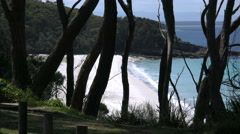 Australia Hyams Beach at Jervis Bay past trees Stock Footage