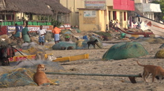 India, early morning scene at beach of small village Stock Footage