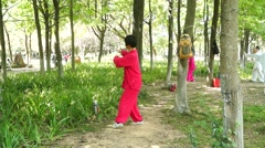 Chinese traditional martial arts, people in practice - stock footage