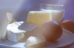 Variety of cheese. - stock photo