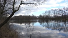 Stock Video Footage of 4k Trees and clouds mirroring on marshland lake surface