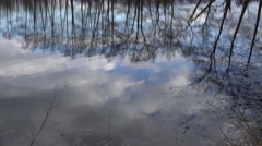 4k Trees and clouds mirroring on lake surface Stock Footage