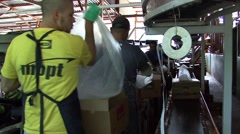 Costa Rica Banana Plantation Men Packing Stock Footage
