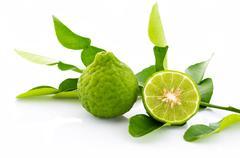 Kaffir lime fresh isolated. Stock Photos