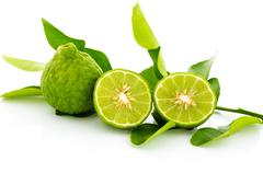 Kaffir lime fresh isolated. Stock Photos