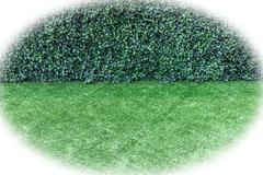 Green artificial turf and bush fence - stock photo