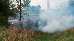 The flames of a brush fire approach a road side.60 fps. - stock footage