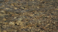 Babbling Brook Water Stock Footage