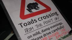 Toads crossing Stock Photos