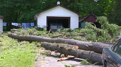 Severe weather thunder storm damage power grid and tree destruction - stock footage