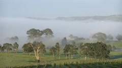 Australia Outlook Hill mist hovers over valley Stock Footage