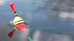 Catching of fish. Stock Footage